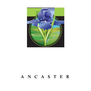 Tiffany Hill
